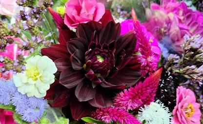 flower-arrangement-from-apricity-flowers